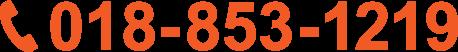 018-853-1219